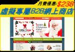 虛擬專屬B2B網上商店